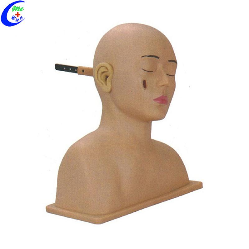 Basic Nursing Set Ear Examination Simulator Model