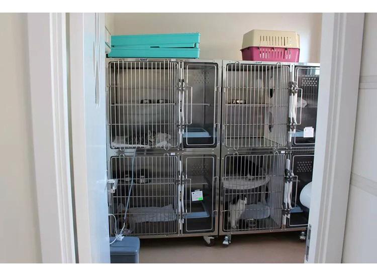 Veterinary Equipment Stainless Steel Veterinary Animal Pet Dog Cage 3