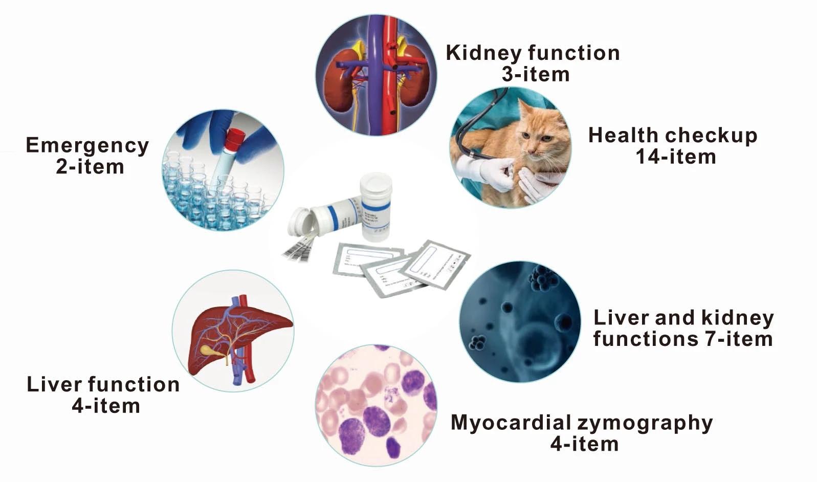 Veterinary Dry Biochemistry Analyzer